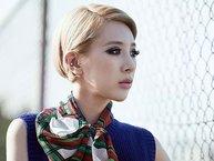 """Seo In Young - Từ """"chị đại"""" trên sóng truyền hình đến """"ác nữ"""" ngoài đời thật"""