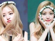 Loạt sao Hàn khiến fan ngẩn ngơ với mốt vòng hoa đội đầu cực đáng yêu