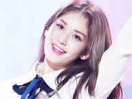 Những idol mang dòng máu lai của Kpop