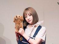 """Fans một khi đã lựa """"thú bông"""" để tặng idol thì không thể """"sai lệch"""" đi đâu được!"""