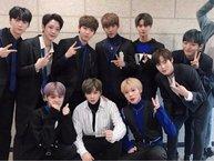 Các thành viên Wanna One sẽ bias ai trong nhóm nếu họ chỉ là một người hâm mộ bình thường?
