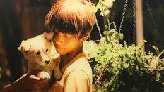 Nhìn ảnh bạn có nhớ tên được các cún cưng của idol?