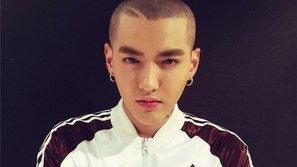 Kpop idol siêu đáng yêu với trào lưu mọc mầm trên đầu