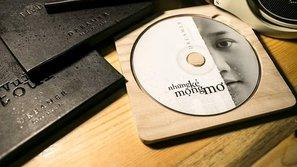 Những bìa đĩa nhạc ấn tượng của sao Việt