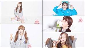 Nếu I.O.I là girlgroup chiến thắng của Produce 101, I.B.I sẽ là girlgroup của những thí sinh thua cuộc