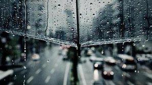 5 ca khúc thích hợp cho những ngày Sài Gòn mưa buồn