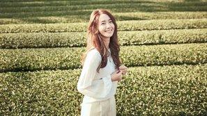 """Bạn có biết 19 nam nghệ sĩ này từng thừa nhận """"phải lòng"""" nữ thần Yoona (SNSD)?"""