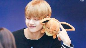 Fan phát sốt vì V (BTS) có gương mặt đáng yêu như cún con