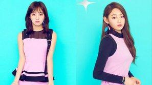 Knet cảm thấy bất công thay cho Sejeong và Mina vì phải đem thu nhập từ I.O.I chia cho gugudan