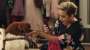 """""""Diện kiến"""" chú chó cưng siêu cấp đáng yêu của Katy Perry"""