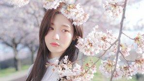 Jung Chaeyeon (DIA) xác nhận góp mặt trong phim truyền hình mới của SBS