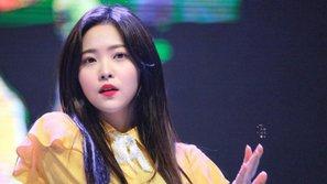 Bạn học của Yeri vô tình tiết lộ Red Velvet sắp sửa comeback