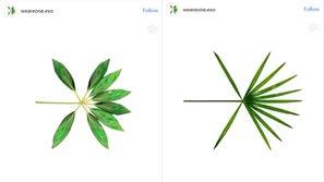 EXO tung ra teaser comeback độc đáo và tiết lộ logo mới