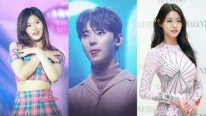 Giới độc thân Hàn Quốc lựa chọn những ngôi sao mà họ muốn đi cùng đến công viên nước nhất