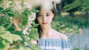 Tzuyu (TWICE) dẫn đầu cuộc bình chọn nữ thần được yêu thích nhất tại Đài Loan