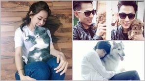 Sao Việt và minh chứng cho câu nói: 'Người yêu không có nhưng thú cưng thì nhất định phải có một con'