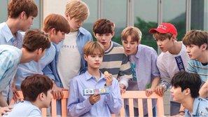Đến người Hàn Quốc còn phát hoảng khi đi đâu cũng thấy quảng cáo của Wanna One