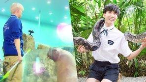 Người nổi tiếng và thế giới hoang dã: 7 màn phản ứng hài hước của thần tượng Kpop khi đối mặt với động vật