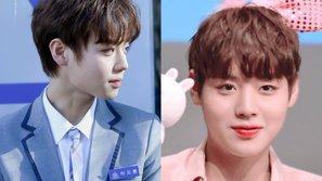 Fan phát hiện Park Ji Hoon (Wanna One) đáng yêu hơn khi tăng cân