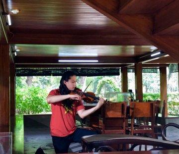 violin anh tú