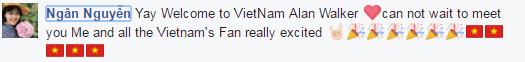 Alan Walker chính thức xác nhận đến Việt Nam biểu diễn
