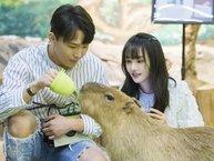 Ảnh Trịnh Sảng - Trương Hằng cãi lộn bị đào lại, fan phát hiện ra trình độ 'dân chơi' của nữ diễn viên!
